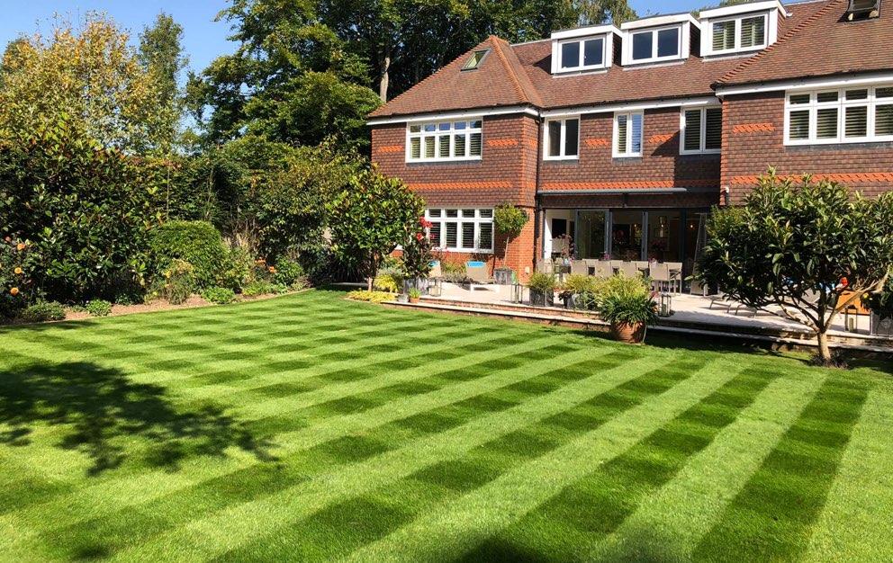 Grass maintenance